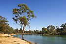 Murray River at Mildura by Darren Stones