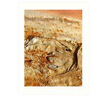 Ancient Land Art Print
