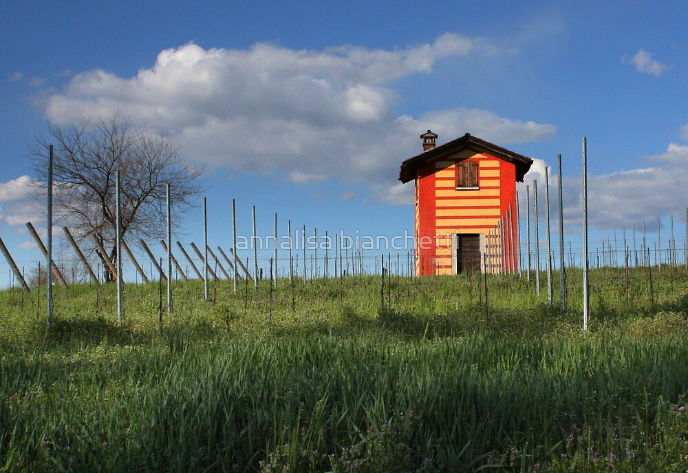 The house in the vineyard  by annalisa bianchetti