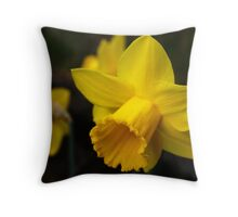 Daffodils, Another Sign of Spring Throw Pillow