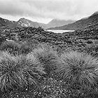 Cradle Mountain by Joseph Darmenia