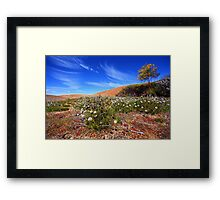 Wave Rock Wildflowers - Hyden  WA Framed Print