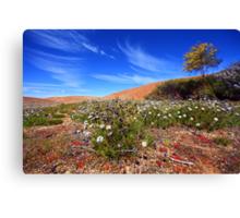 Wave Rock Wildflowers - Hyden  WA Canvas Print
