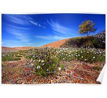 Wave Rock Wildflowers - Hyden  WA Poster