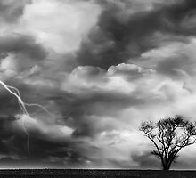 Black and White Storm with Lightning and Tree by Rebecca  Haegele
