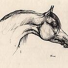the arabian horse drawing by tarantella