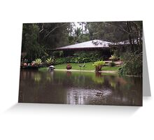Ducks on the pond Greeting Card