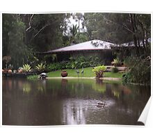 Ducks on the pond Poster