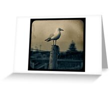 Seagull - Vintage lens Greeting Card