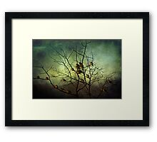 Sunning Theirseleves Framed Print