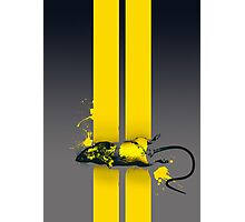Roadkill poster Photographic Print
