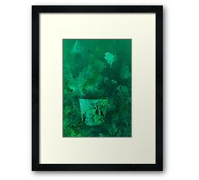 Glass in deep water Framed Print