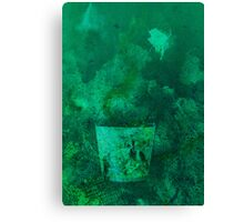 Glass in deep water Canvas Print