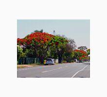 Poinciana Trees, Victoria Point, Queensland, Australia Classic T-Shirt