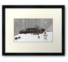Ararat, Noah etc Framed Print