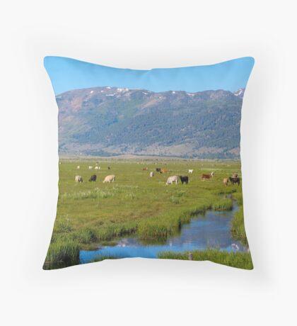 highland pastures Throw Pillow