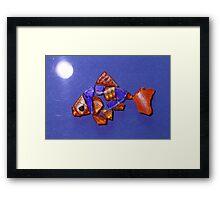 Freddie the Goldfish by Moonlight Framed Print