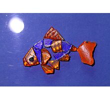 Freddie the Goldfish by Moonlight Photographic Print