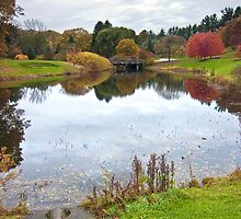 Pond at Cornell University Plantations, Ithaca, NY by Stan Bowman