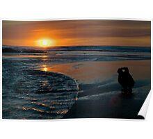 Sunset Capture Poster