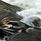 River Olona     II. by jimmylu