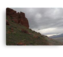 Nevada Plains Metal Print