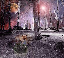 Silent wood by Susie Hawkins