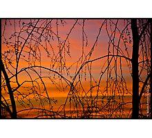 Perfect Sky Photographic Print
