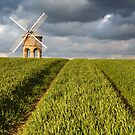 Chesterton Windmill by Steve  Liptrot