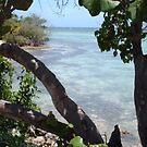 Jamaica by Shulie1