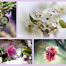 Impressions Of Spring by Evita