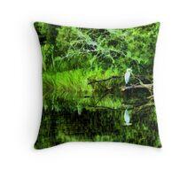 Carolina Wetlands Throw Pillow