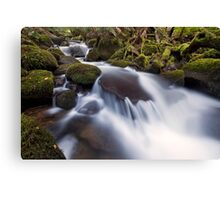 Cement Creek Canvas Print