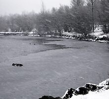 Snowstorm by Jane Corey