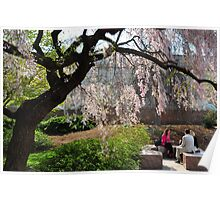 The Moongate Garden - Smithsonian - Washington D.C. Poster