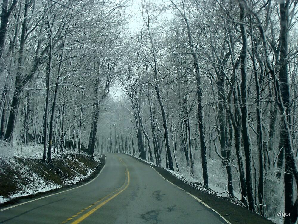 Spring Drive by vigor