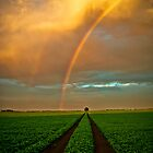 The End of the Rainbow by Sandra Parlow