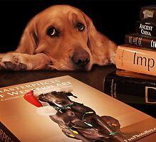 Dog Book by William Moffitt