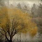 Milwaukee Lagoon © by Dawn M. Becker