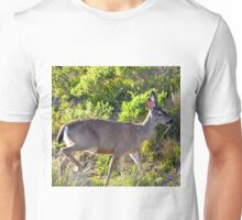 golden hour deer Unisex T-Shirt