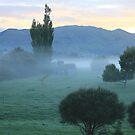 Autumn mist - Black Rock, Paeroa by shoshanah