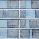 Blue Windows by Joan Wild