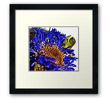 Blue Death Framed Print