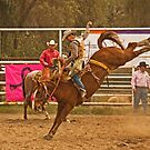 Rodeo A Wild Horse Kicks Its Back Legs High in the Air by Buckwhite