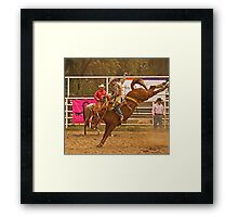 Rodeo A Wild Horse Kicks Its Back Legs High in the Air Framed Print