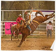 Rodeo A Wild Horse Kicks Its Back Legs High in the Air Poster