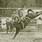 Cowboy Rides a High Kicking Bronco by Buckwhite