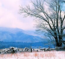 WINTER,CADES COVE by Chuck Wickham