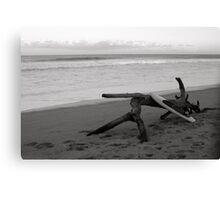 Boarding at the Beach  Canvas Print