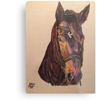 Dark Bay Dressage Horse Metal Print